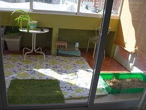 La madriguera informaci n cuidados alojamiento conejos recintos para conejos y cobayas - Juguetes caseros para conejos ...